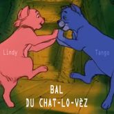 Soiree 6eme Bal du Chat lo Ves